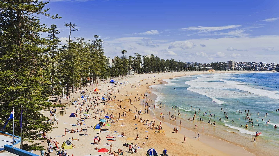 manly beach crowded